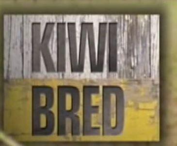 kiwi bred image